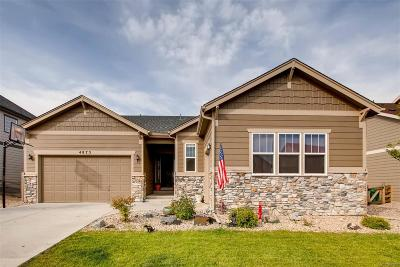 Aurora CO Single Family Home Active: $519,000