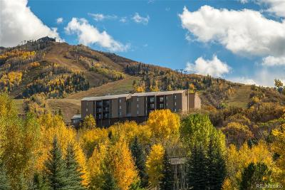 Steamboat Springs Condo/Townhouse Active: 1805 River Queen Lane #303
