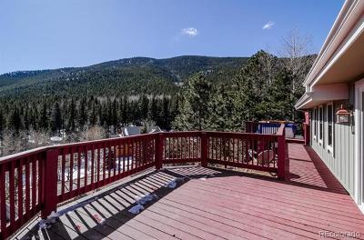 Evergreen Single Family Home Active: 62 Aspen Place