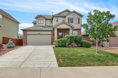 Castle Rock Single Family Home Under Contract: 3655 Amber Sun Circle