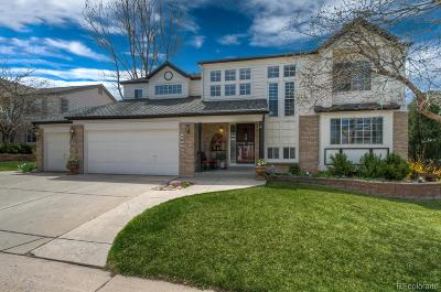 Meadows, The Meadows Single Family Home Under Contract: 4990 Golden Valley Trail