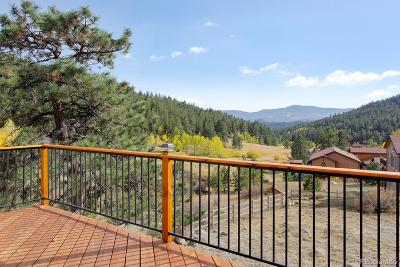 Evergreen, Conifer, Bailey, Morrison, Golden, Indian Hills Single Family Home Active: 180 Wisp Creek Drive