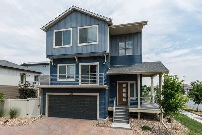 Denver Single Family Home Active: 5026 Andes Way