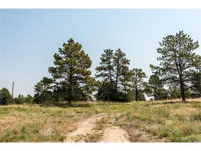 Douglas County Residential Lots & Land Active: 8827 Witez Court