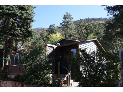 Cascade Single Family Home Active: 8232 West Us Highway 24