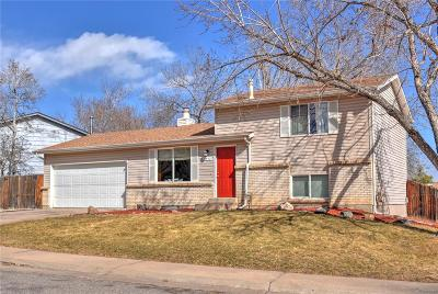 Littleton Single Family Home Active: 6542 South Field Way