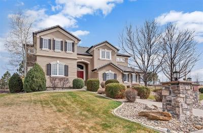 Castle Pines Single Family Home Under Contract: 8390 Coyote Drive