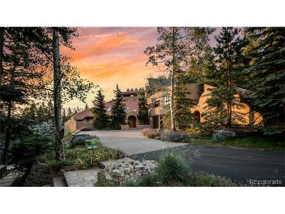 Evergreen Single Family Home Active: 33791 Meadow Mountain Road