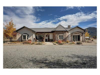Buena Vista Single Family Home Active: 28469 County Road 321