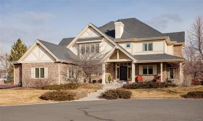 Littleton Single Family Home Active: 16 Arabian Place
