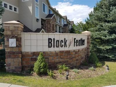 Castle Rock Condo/Townhouse Active: 457 Black Feather Loop #706