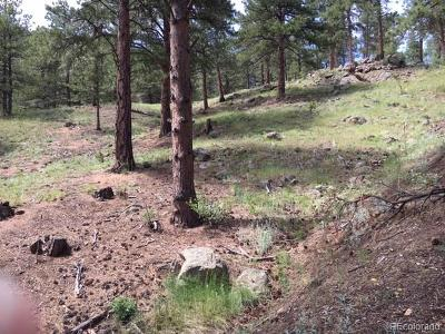 Boulder Residential Lots & Land Active: 612 Wagonwheel Gap Road
