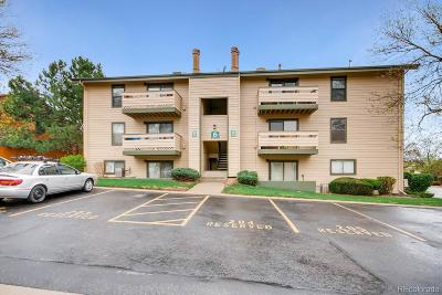 Lakewood Condo/Townhouse Under Contract: 380 Zang Street #6-304