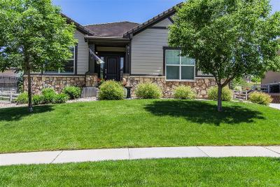 Broomfield Single Family Home Active: 16656 Edwards Way