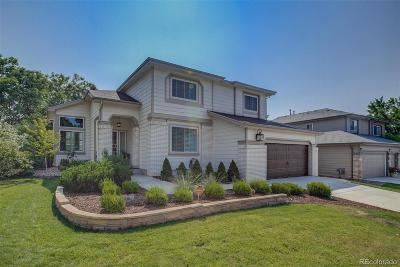 Douglas County Single Family Home Active: 6536 Millstone Street
