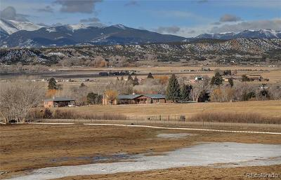 Salida Single Family Home Active: 8975 County Road 166