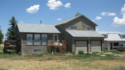 Elbert County Single Family Home Active: 527 Rome Avenue