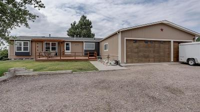 Elbert County Single Family Home Active: 43051 Saddlehorn Drive