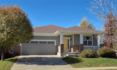 Erie Single Family Home Active: 910 Petras Street