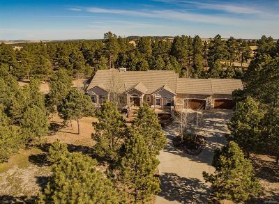 Colorado Springs Single Family Home Active: 4502 Mountain Dance Drive