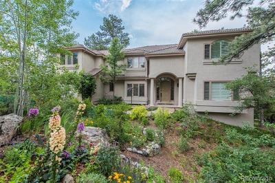 Castle Pines Village, Castle Pines Villages Single Family Home Active: 516 Prospect Drive
