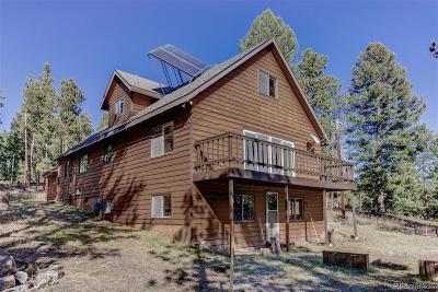 Conifer Single Family Home Sold: 23891 Black Bear Trail