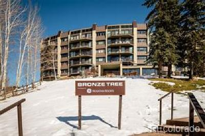Steamboat Springs CO Condo/Townhouse Active: $425,000