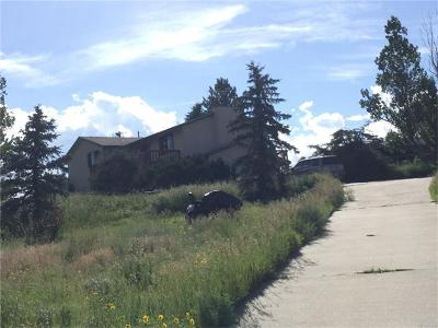 Franktown Single Family Home Sold: 2475 South Tarryall Way