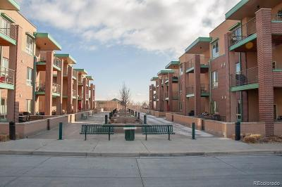 Louisville Condo/Townhouse Under Contract: 1053 West Century Drive #206