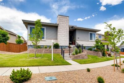 Arvada Single Family Home Active: 9465 Kilmer Way