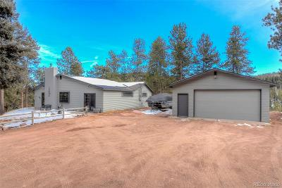 Conifer Single Family Home Sold: 27132 Log Trail