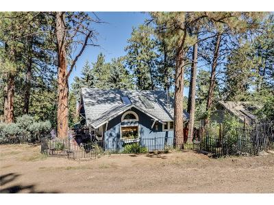 Evergreen Single Family Home Under Contract: 4784 South Pine Road