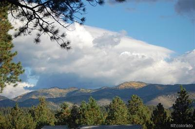 Evergreen Residential Lots & Land Active: 31762 Soda Creek Drive