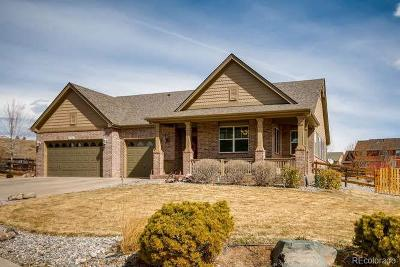 Arvada Single Family Home Active: 7714 Terry Court