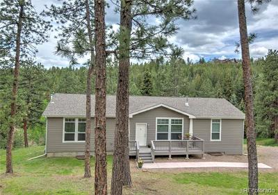 Evergreen Single Family Home Active: 6376 King Road