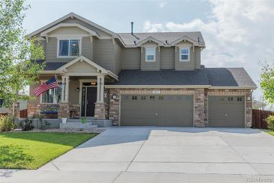 Frederick Single Family Home Under Contract: 8603 Raspberry Drive