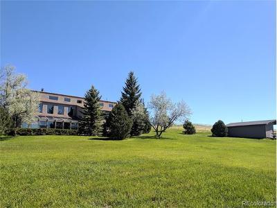 Castle Rock Single Family Home Active: 1405 South Mountain View Road