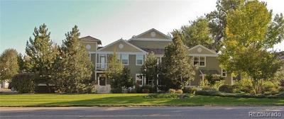 Longmont Condo/Townhouse Active: 4501 Nelson Road #2503