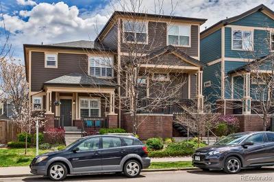 Denver Single Family Home Active: 728 Albion Street