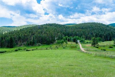 Evergreen Single Family Home Active: 924 Yankee Creek Road