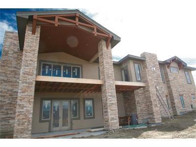 Castle Rock Single Family Home Active: 1363 Hardrock Place