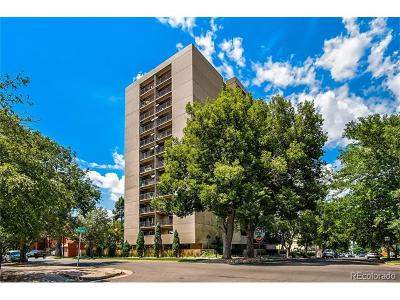 Cheeseman & Moffat, Cheeseman Park, Cheesman Park Condo/Townhouse Active: 1433 North Williams Street #505