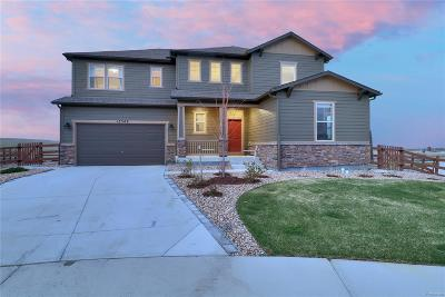 Arvada Single Family Home Under Contract: 15349 West 95th Place