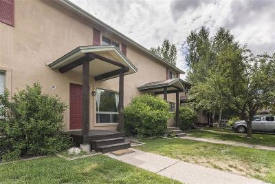 Steamboat Springs Condo/Townhouse Under Contract: 3180 Ingles Lane #D-2