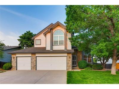 Single Family Home Active: 4028 South Sable Circle