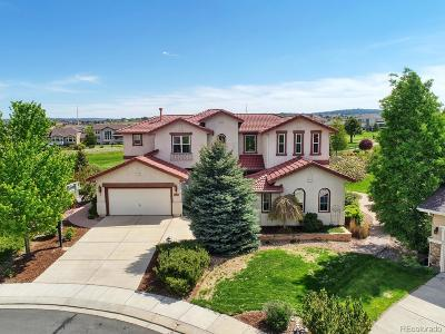 Pine Creek Single Family Home Active: 3289 Indian Peak Court