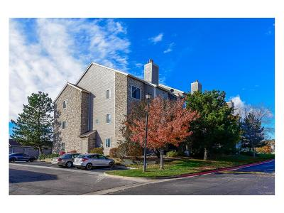 Condo/Townhouse Sold: 7498 South Alkire Street #206