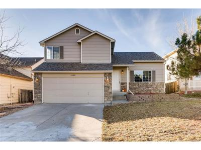 Douglas County Single Family Home Active: 11085 Callaway Road