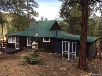 Pine CO Single Family Home Under Contract: $155,000