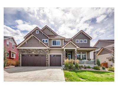 Castle Rock Single Family Home Active: 1160 Freedom Way